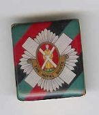 ROYAL SCOT'S  LAPEL PIN / BADGE